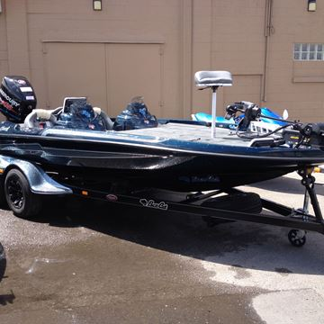 Picture of Bass Cat, Caracal